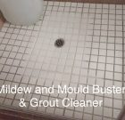 Mildew, Mould and Grout Cleaner 1L